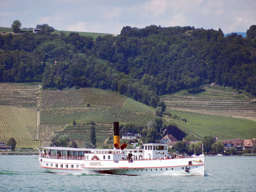 NEUCHATEL - LNM - Lac de Neuchatel - Photo: ©Mike Tedstone, 26th June 2014 -  www.simplonpc.co.uk
